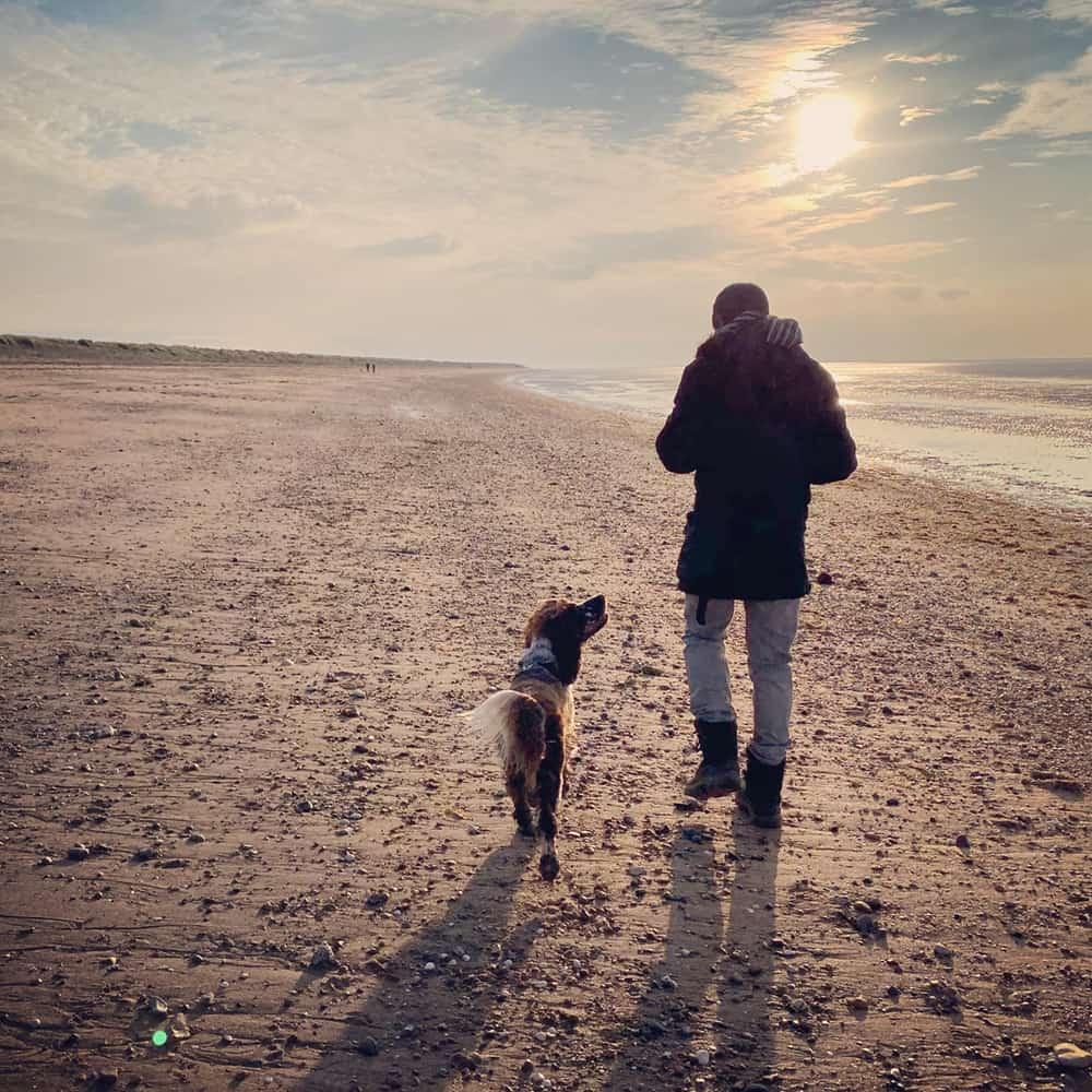 Dog Behaviourist Brackley