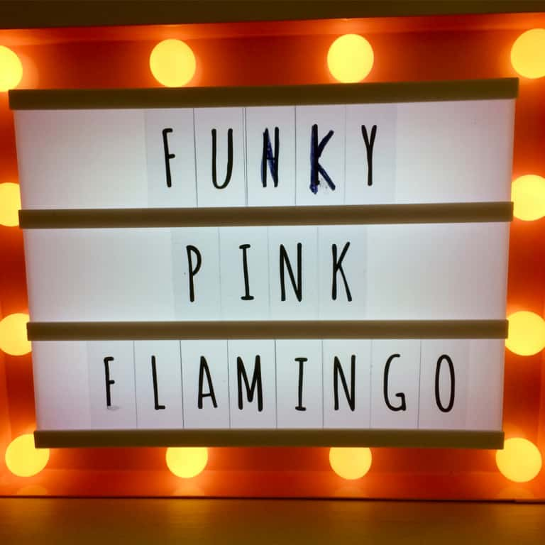 Funky Pink Flamingo Brackley