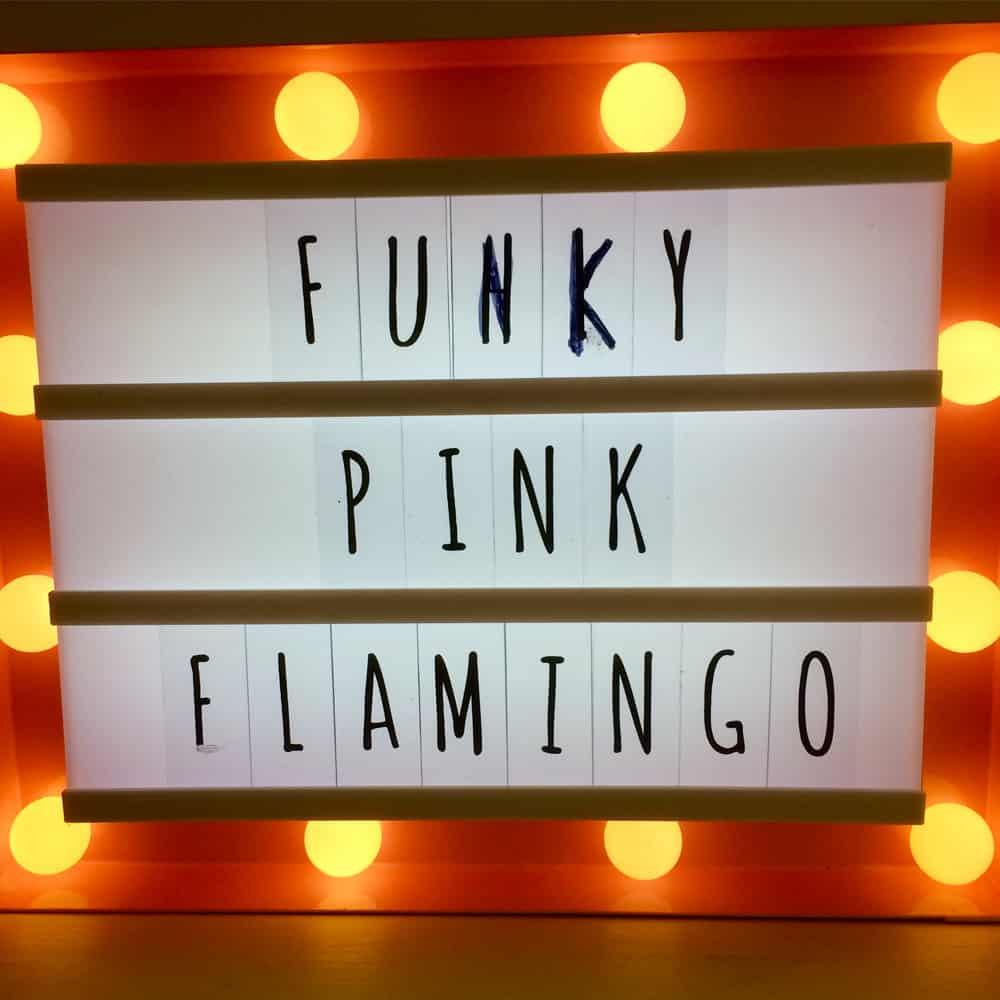 Funky Pink Flamingo Brackley