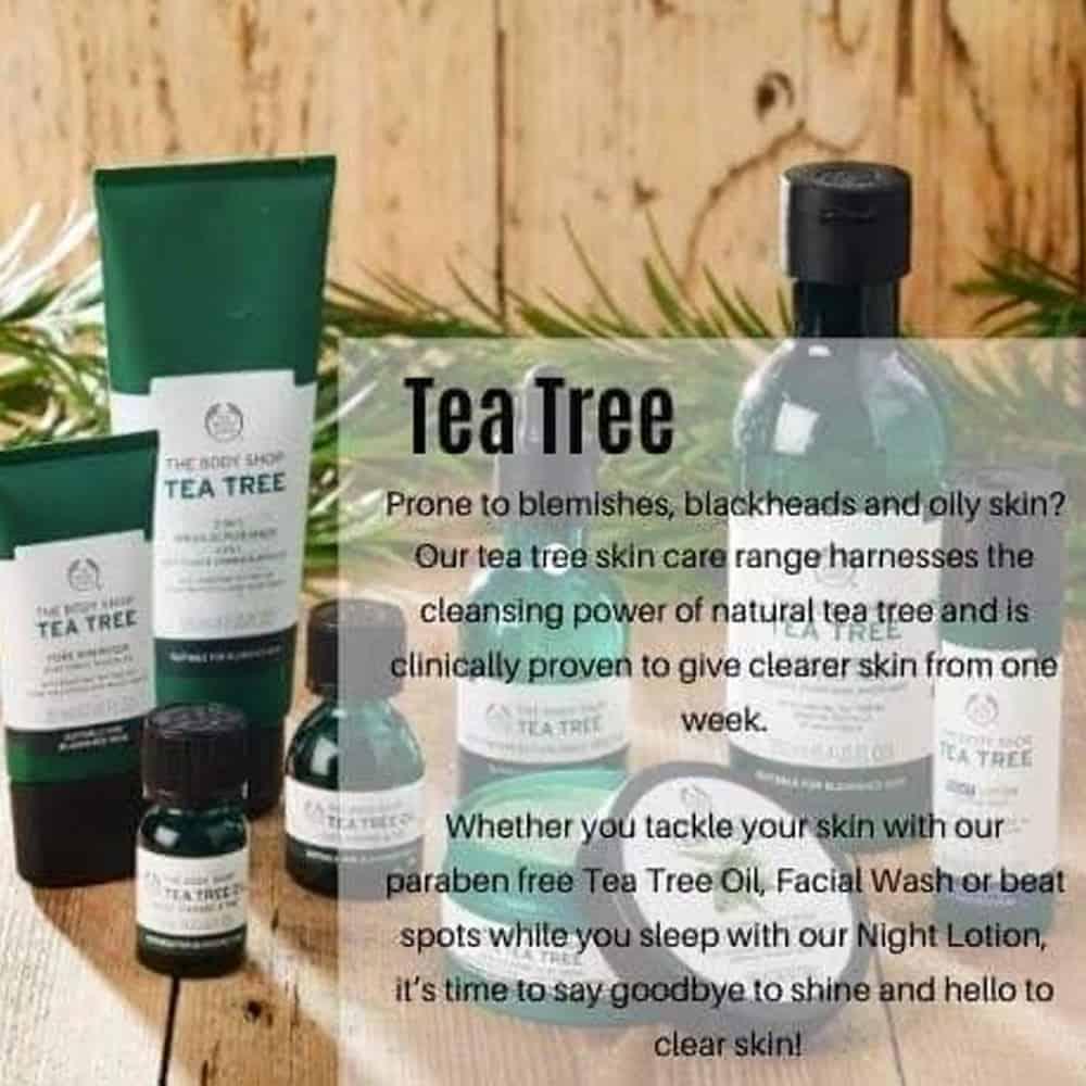 Tea Tree Products Brackley